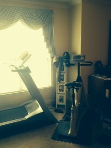 It's hard to see with the early morning sun streaming in...my Lifecycle and treadmill...